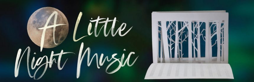 A little night music banner
